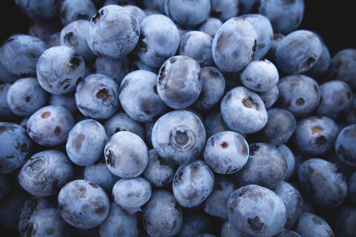 blueberries-bunch-2