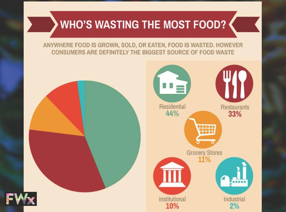 who is wasting the most food