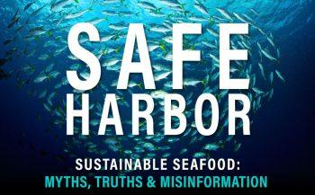 safe-harbor-graphic-for-blog