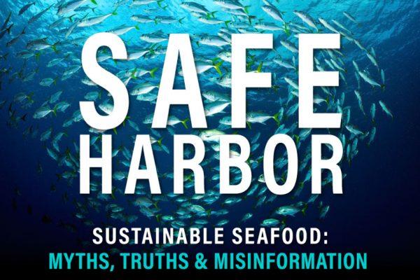 safe-harbor-graphic-for-blog