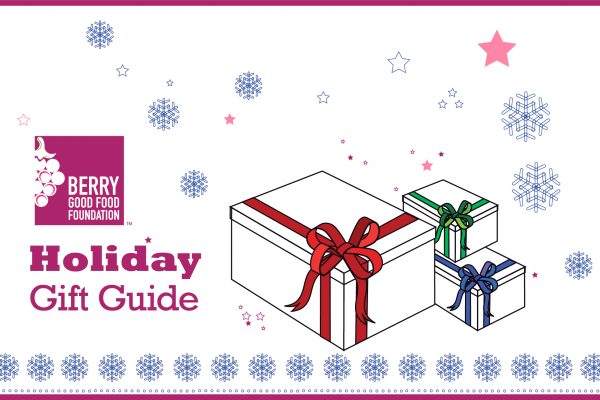 holiday-gift-guide-border